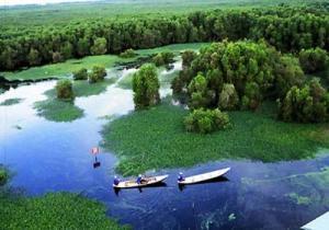 U-Minh-Thuong-nationalpark